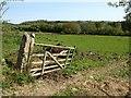 SX3876 : Field in the Tamar valley by Derek Harper