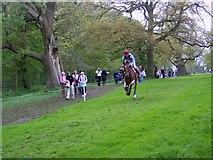 ST8083 : Galloping hard, Badminton Horse Trials by Maigheach-gheal