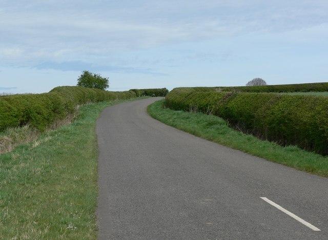 Corkscrew Lane climbing toward Farm Town