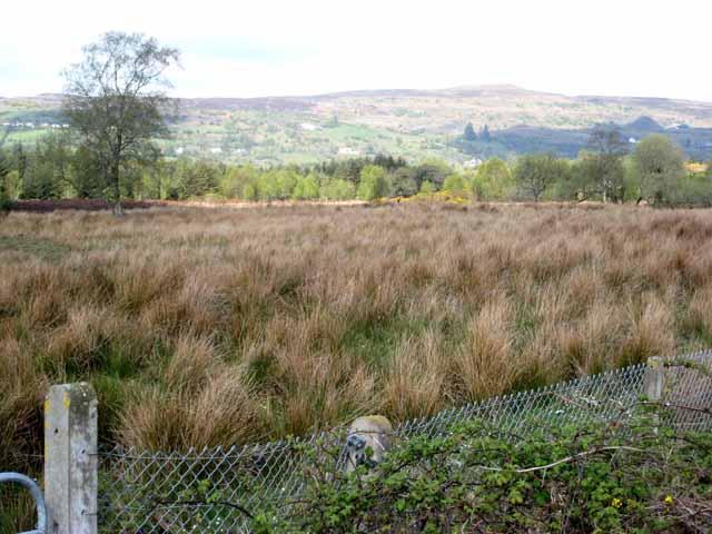 Marshy field near Mountallen Bridge