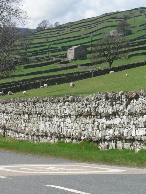 Reeth: a patchwork of fields and walls