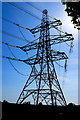 SY7891 : Pylon in the sun, Pallington by Nigel Mykura