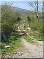 G8837 : Farm road near Tawnymanus by Oliver Dixon