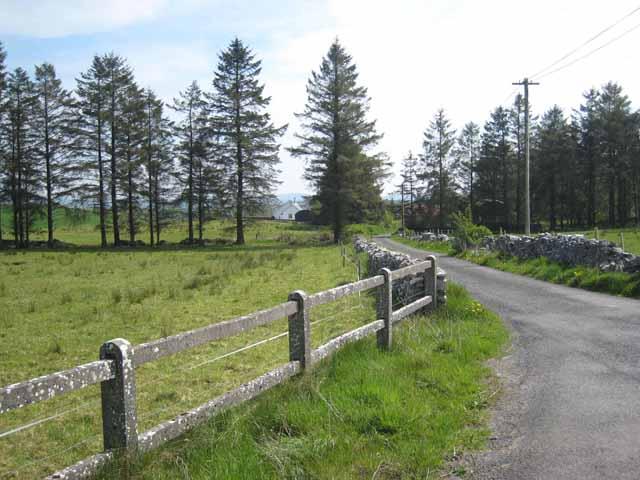 Shelter belt at Magkeralackagh