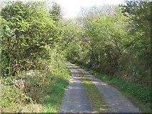 G8510 : Lane at Derreenanarry by Oliver Dixon