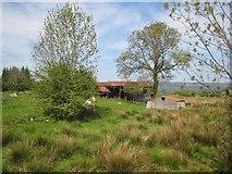 G8710 : Barns at Bridgecartron by Oliver Dixon