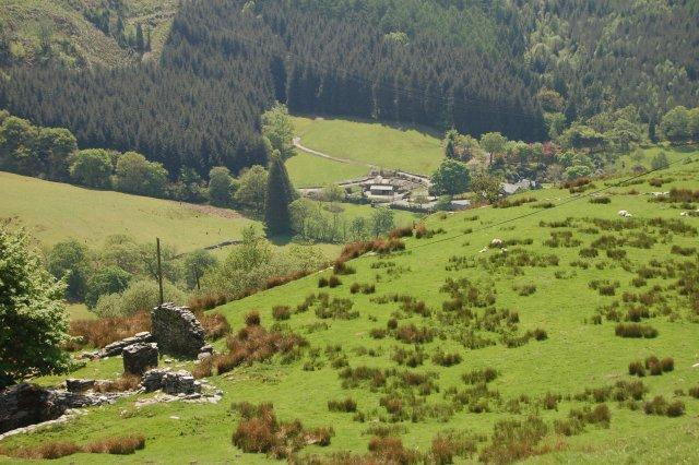 Cwm Farm from B4391 viewpoint by John Firth