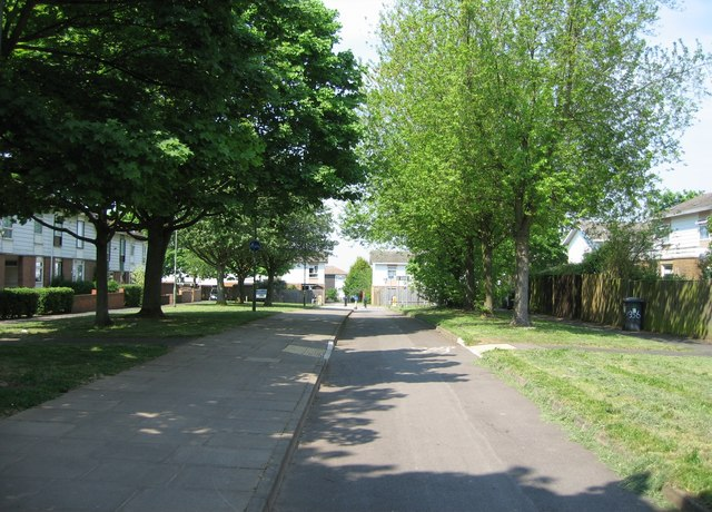 Cycleway south of Abbey Road by Sandy B