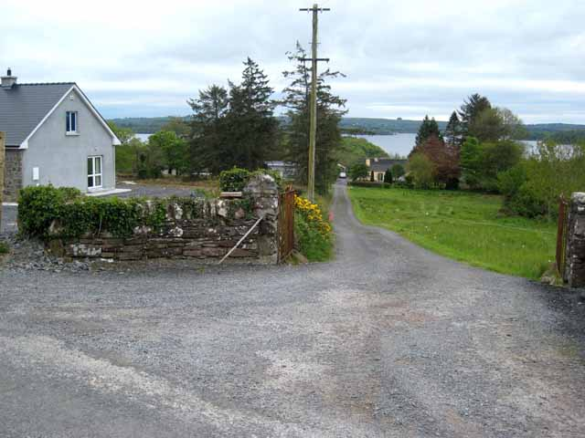 Driveway to houses overlooking the north shore of Lough Key