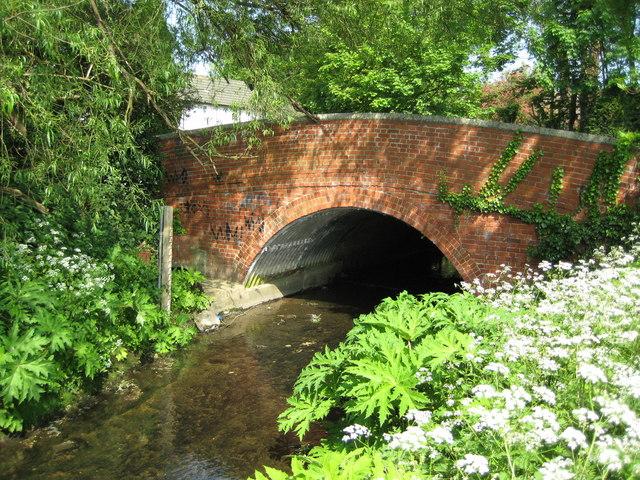 River Pinn and the Robbie Bell Bridge