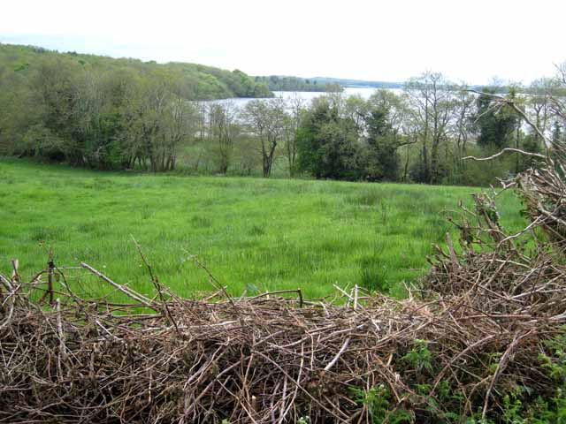 Bay on the north side of Lough Key