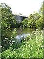 TG4027 : Pond beside Heath Road by Evelyn Simak