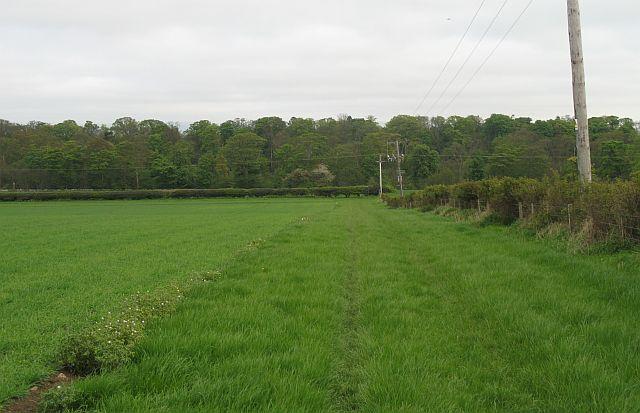 John Muir Way, Balgone