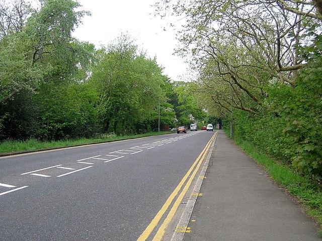 Bush Road