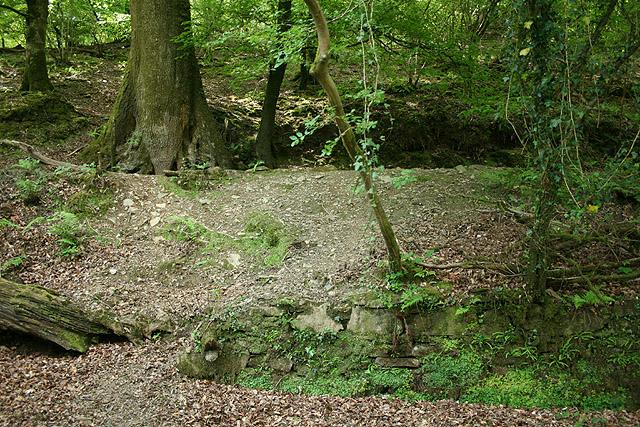 Buckland Monachorum: old leat