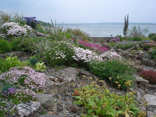 Alpine garden overlooking Drumcliff Bay