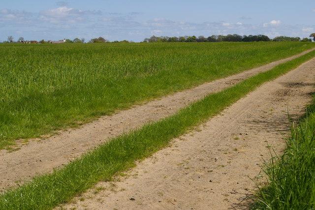 Path to Barmoor Mill Farm