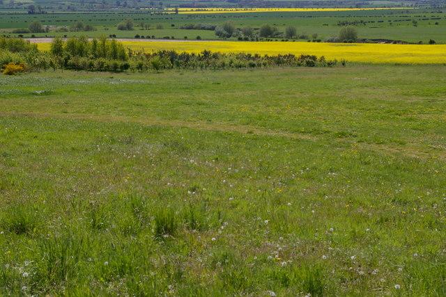 Farmland near Doddington