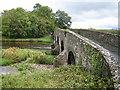 S2322 : River Suir: Sir Thomas' Bridge (1) by Nigel Cox