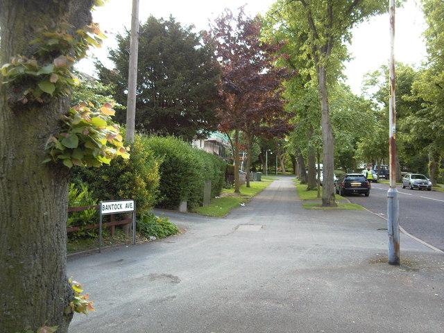 Corner of Bantock avenue and Bradmore road.