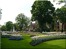 TL0549 : Embankment flower beds by Robin Drayton