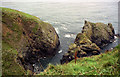 SW7214 : The Colt, near Cadgwith, Cornwall by Dr Neil Clifton