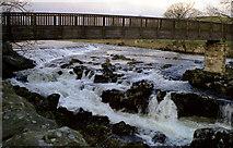 SE0063 : Linton Falls, River Wharfe, Yorkshire by Dr Neil Clifton