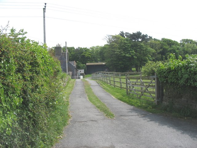 The driveway of Minffordd Farm