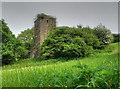 SN0613 : Newton Church Tower by Stephen Elwyn RODDICK