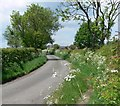 SK3317 : Sandtop Lane in Blackfordby, Leicestershire by Mat Fascione