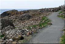 C9444 : Path, Giant's Causeway [1] by Rossographer