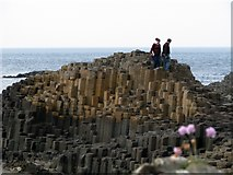 C9444 : Giant's Causeway [1] by Rossographer