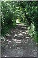 SX4260 : Green Lane near Pill Farm by Tony Atkin