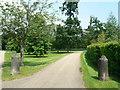 SU6449 : Bollards - approach to Hackwood House by Sandy B