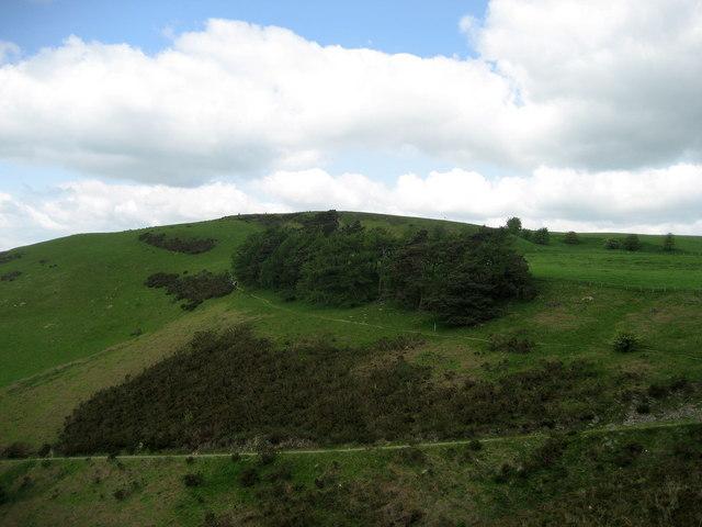 Cwm-sanaham Hill