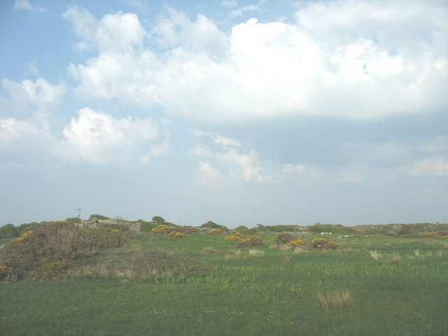 Rock outcrop and marsh