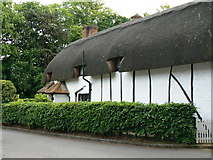 SU6350 : Thatched Cottage - Viables Lane by Given Up