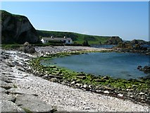 D0345 : West of Ballintoy harbour by Rossographer