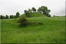 SO7937 : Motte & Bailey, Castlemorton by Bob Embleton