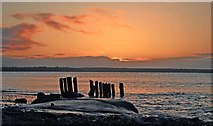S7006 : Woodstown at dawn by tony quilty