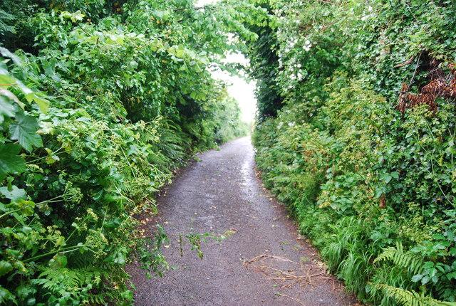 Narrow Devon lane in Stokenham.