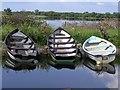 G8853 : Boats at Breffni by Kenneth  Allen