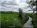 SO2399 : River Camlad by Chris Heaton