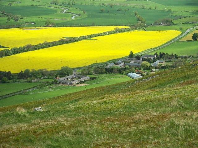 The Northumbrian village of Akeld