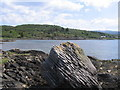 NR7388 : Rocky foreshore and Carsaig Bay by E Gammie