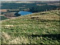 SE0903 : Edge of Holme Moss by Gerald England