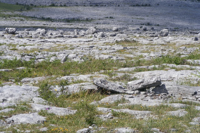 Limestone Pavement and Glacial Erratics - Creehaun Townland