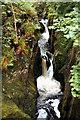 SD7074 : Baxengill Gorge, River Doe, near Ingleton by Dr Neil Clifton