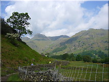 NY3006 : Great Langdale from the Cumbria Way by Tony Vickers