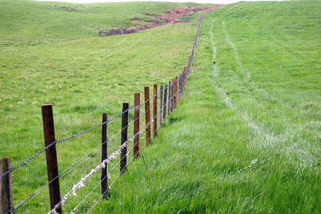 Farmland near to Pathstruie by Paul McIlroy
